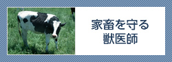 家畜を守る獣医師